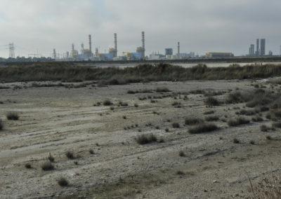 contesto ambientale brindisi